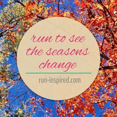 It's true! I have never noticed the seasons more!