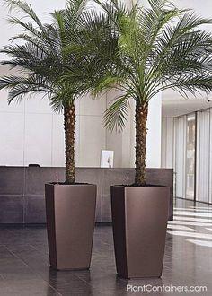 horizon tall Cubico in Matte Metallic Bronze Home Landscaping, Tropical Landscaping, Front Yard Landscaping, Big Indoor Plants, Outdoor Plants, House Plants Decor, Plant Decor, Garden Wall Designs, Garden Design
