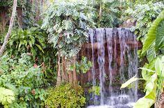 Yumenoshima Tropical Greenhouse Dome - Where In Tokyo listing