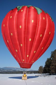 Strawberry Heights hot air balloon