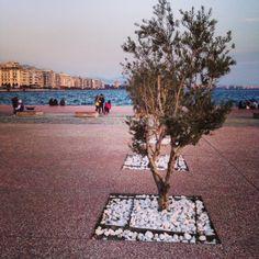 Thessaloniki Crete Greece, Thessaloniki, Macedonia, Sidewalk, Walkway, Fruit Salads, Walkways
