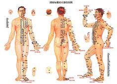 Los meridianos de la medicina china tradicional | RADIO SOH