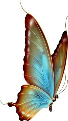 Great free clipart, png, silhouette, coloring pages and drawings that you can use everywhere. Butterfly Clip Art, Butterfly Drawing, Butterfly Pictures, Butterfly Painting, Butterfly Wallpaper, Blue Butterfly, Vintage Butterfly, Art Papillon, China Painting