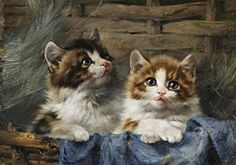 Two Kittens in a Basket : Julius Adam II : circa 1913 : Fine Art Giclee Print Kittens Cutest, Cats And Kittens, In Loco, Cat Tattoo, Animal Paintings, Cat Art, Animal Photography, Dog Cat, Cute Animals