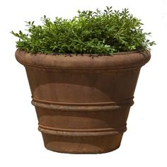 "Campania International, Inc Round Pot Planter Size: 27.5"" H x 35.5"" W x 35.5"" D, Finish: Verde"
