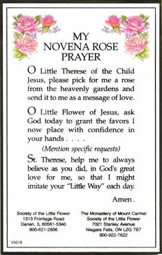 Novena to St Therese for a Rose Sainte Therese, St Therese Of Lisieux, St Therese Prayer, Faith Prayer, My Prayer, Rosary Prayer, Prayer To St Rita, Jesus Prayer, Holy Rosary