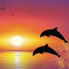 Sunrise Drawing Oil Painting Pictures Pictures To Paint Easy Watercolor Watercolor Paintings Silhouette Painting Dolphin Drawing Dolphin Painting Easy Drawings Oil Painting Pictures, Pictures To Paint, Acrylic Painting Canvas, Canvas Art, Dolphin Painting, Dolphin Drawing, Silhouette Painting, Beautiful Nature Wallpaper, Sunset Wallpaper