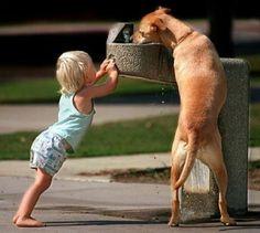 Kindness-dog+at+foun