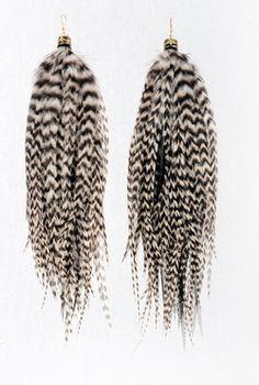 Prairie Pheasant earrings