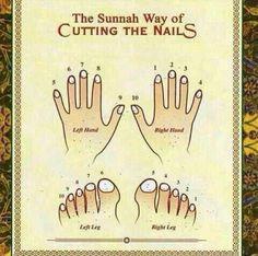 The Sunnah ways cutting the nails