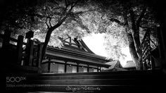 Yasaka Shrine KYOTO by sergioartworks from http://500px.com/photo/210641373 - Yasaka Shrine (八坂神社 Yasaka-jinja) once called Gion Shrine (祇園神社 Gion-jinja) is a Shinto shrine in the Gion District of Kyoto Japan. Situated at the east end of Shijō-dōri (Fourth Avenue) the shrine includes several buildings including gates a main hall and a stage.(Wikipedia). More on dokonow.com.