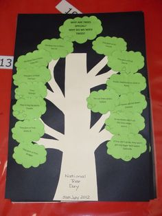 Poster on why trees are important! © Sarah Marynissen