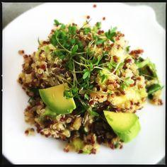 Rode quinoa avocado salade