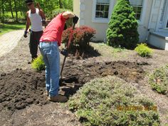Septic Inspection in Southampton