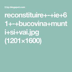 reconstituire+-+ie+61+-+bucovina+munti+si+vai.jpg (1201×1600)
