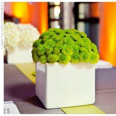 01152012 – Modern Floral Centrepieces
