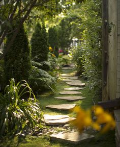 Beautiful gardens A storybook garden She uses lots of Irish moss as ground cover I need to look into that Moss Garden, Garden Paths, Garden Landscaping, Landscaping Ideas, Storybook Gardens, Landscape Design, Garden Design, Side Yards, Front Yards