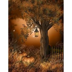 halloween ❤ liked on Polyvore featuring home, home decor, holiday decorations and halloween home decor