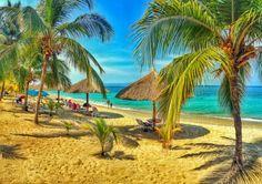 Bonne semaine à toutes et à tous ! #BackToWork  #bringmeback  #clubindigo #haiti  #cotedesarcadins #beach #paradise  #morning #indigobeach #HaitiExperienceIt