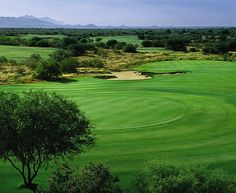 Talking Stick - North Golf Course - These Golf Courses are part of the Sonoran Suites Golf Packages & Courses in Scottsdale/Phoenix, Arizona that are available to you, your family, friends or corporate groups. Sonoran Suites offers premier vacation condo rentals and golf vacation packages in Scottsdale, Phoenix, Tucson, San Diego, Palm Springs, Las Vegas and Mesquite!  Call us today at 1-888-786-7848 and let our professional golf staff book the best golf vacation possible…