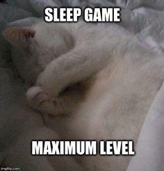 Sleep Game Maximum Level