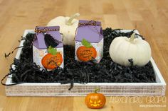 stampin-up_halloween_12-tage-halloween_verpackung_einweckglaeser_jar-of-hauntst_pinselschereco_alexandra-grape_02