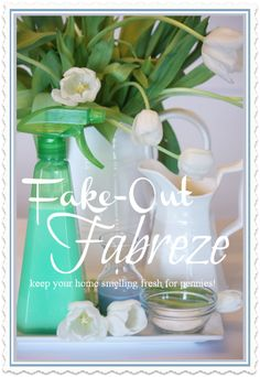 FAKE OUT FABREZE Works great for a whole lot less!