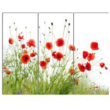 'Poppies on White Background' 3 Piece Photographic Print on Canvas Set