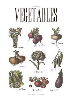 Vegetables, poster