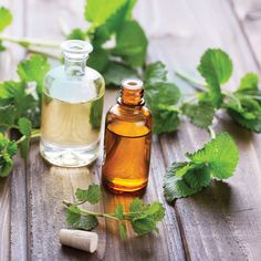 Taking essential oils orally can cause health problems. Learn the safety requirements of ingesting these concentrated plant extracts.