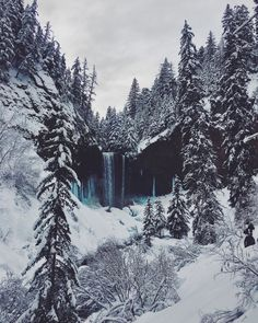 Tamanawas Falls. Mt. Hood National Forest, Oregon (January, 2017).