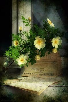 Жемчуг И Цветы