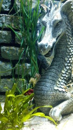 Sea Horses and Dragon Statue by *JoannaBromley on deviantART