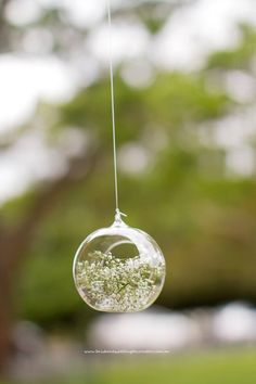 Hanging glass globes with babies breath florals set the scene for romance at this Brisbane New Farm Park Rotunda wedding styled by Brisbane Wedding Decorators.  www.brisbaneweddingdecorators.com.au