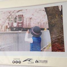 【anaryrie】さんのInstagramをピンしています。 《いよいよ2016年最終日ですね ・ 大掃除は昨日までに全て終わらせて、今日は朝からのんびり過ごしています☺︎ ・ 今年の春撮影し、30000人の写真展で京都鉄道博物に飾って頂いてたものが昨日戻ってきました。 オリジナルフレーム付きなので、そのまま飾りたいと思います♪♪ ・ ・ 今年も皆さんのいいね&コメント本当にありがとうございました🙇🏻 来年も皆さんにとって良い年となりますように✨ #阪急電鉄 #5000系 #桜 #長男 #鉄道 #電車 #30000人の写真展 #鉄道のある風景 #ママカメラ #ig_kids #ig_kidsphoto》