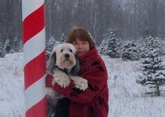Merry Christmas to my tibetan terrier......Moose Of The Northwoods!  He was bred by Nikkie at  http://www.rileekennels.com