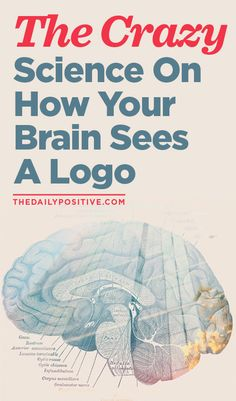 The Crazy Science On How Your Brain Sees A Logo