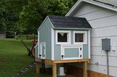Custom chicken coop, on stilts. I like the simple blue design!