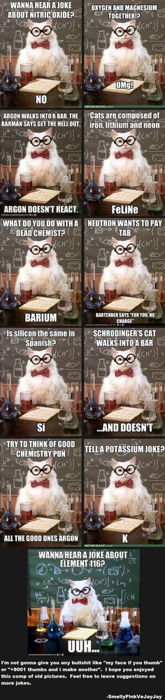 Science Cat...there's a cat for everything!