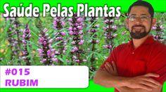 Saúde pelas Plantas - Rubim [circulação, trombose, cardíaca, digestiva, ...