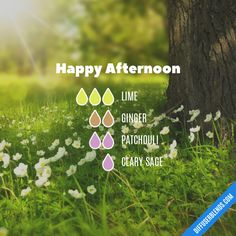 Happy Afternoon - Essential Oil Diffuser Blend