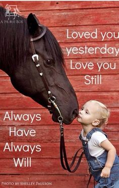 Your horse would never give up or stop loving you That is why we never give up or stop loving our horses Even when they are gone… They still have a place in our heart I love you RC Carmichael
