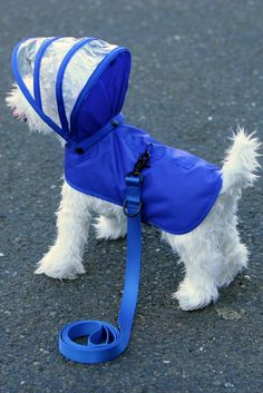Baby Dogs, Pet Dogs, Dogs And Puppies, Pets, Dog Raincoat, Dog Clothes Patterns, Puppy Clothes, Clothes For Dogs, Dog Boutique