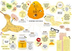 Mind Map for the Benefits of Honey