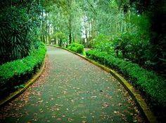 Parque Ecologico Macultepetl en Veracruz