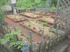 Vegetable garden plans for small spaces new small space ve able gardening in new england