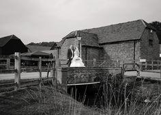 www.lilyfernephotography.co.uk Tewin bury Farm @tewinbury