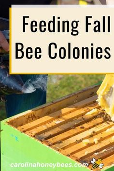 Bee Hives Boxes, How To Start Beekeeping, Feeding Bees, Backyard Beekeeping, Chicken Tractors, How To Make Beer, Small Farm, Raising Chickens, Bees Knees