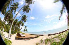 #alagoas #jujunatrip #travel #beach #summer #brasil #praia #viagem #patacho #praiadopatacho #pousadaxuw