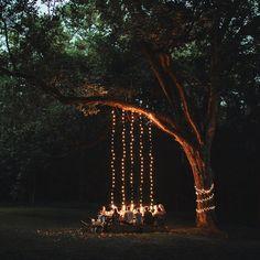 arbre éclairé avec une guirlande lumineuse et table festive